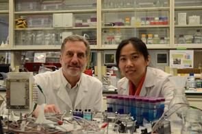 Bruce Logan and Fang Zhang working on the Thermally Regenerative Ammonia Battery (TRAM)
